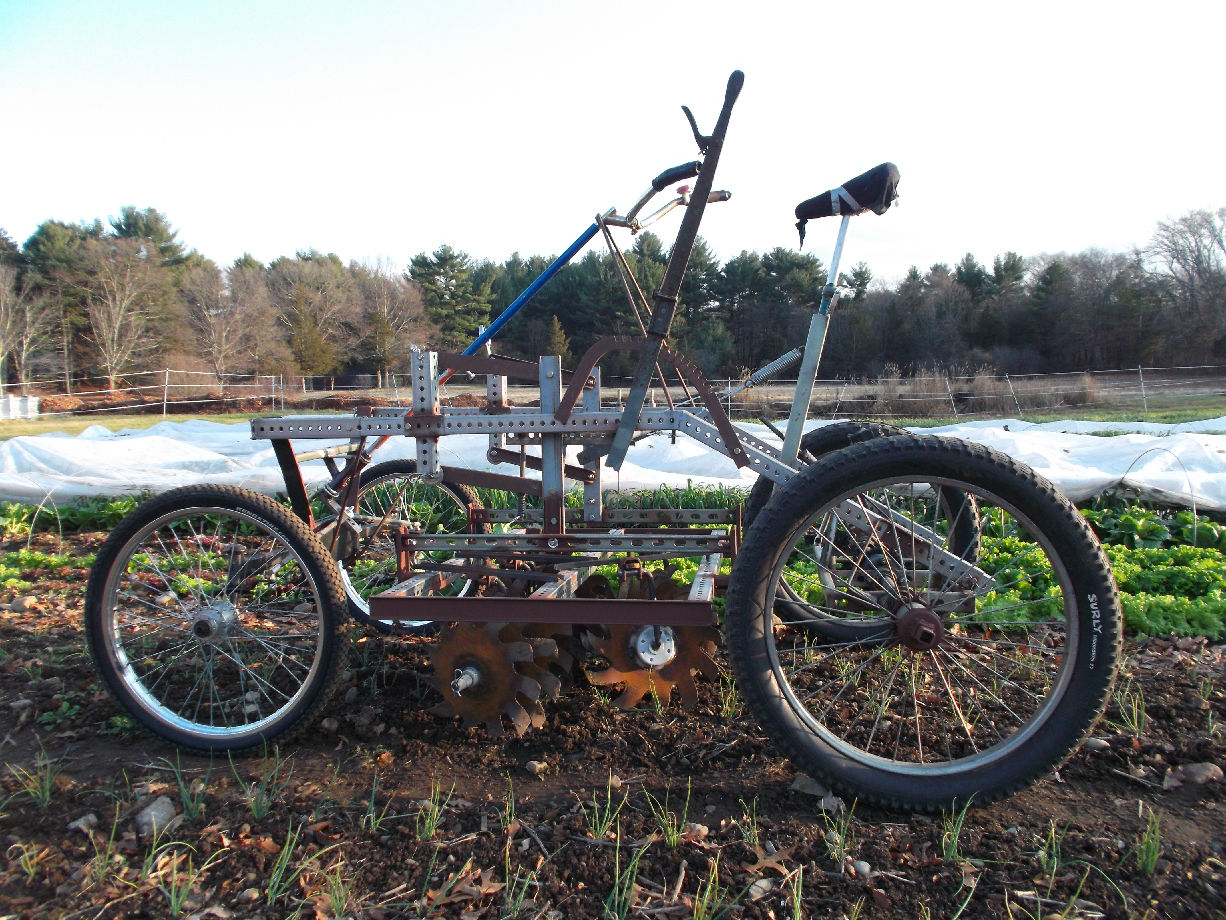 culticycle