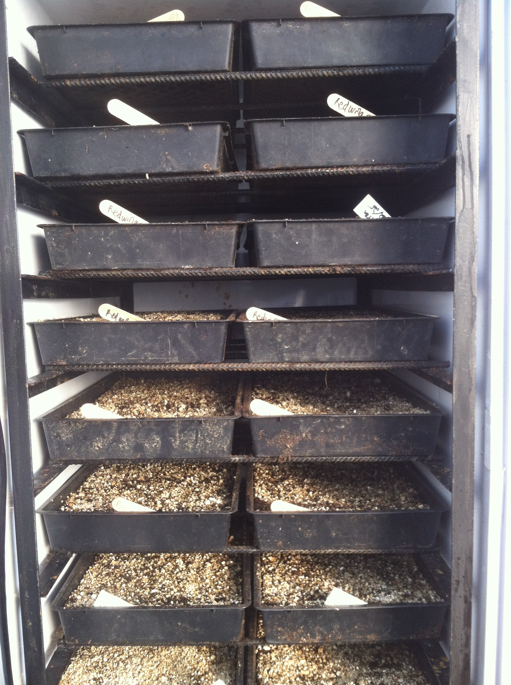 Sweat Box Germination Chamber