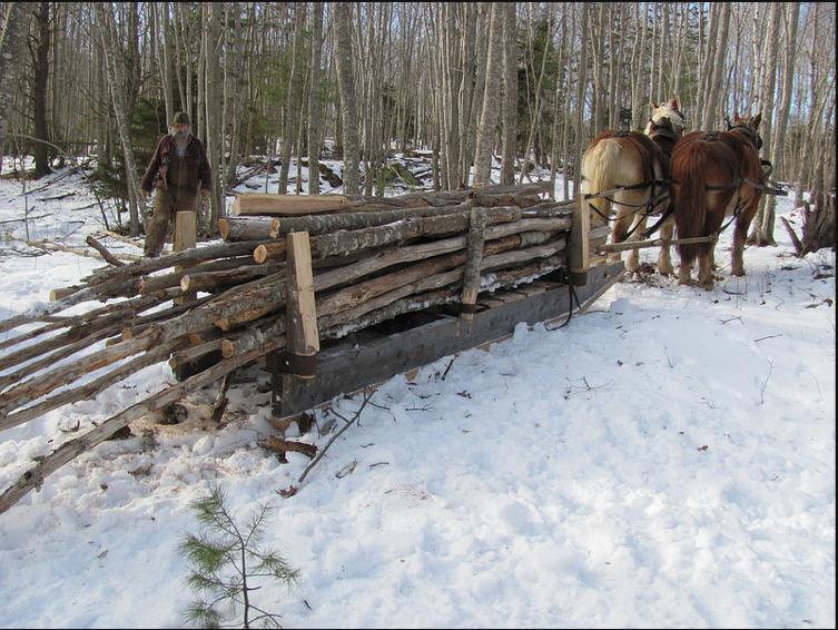 Draft Horse Loggin Scoot (sled)