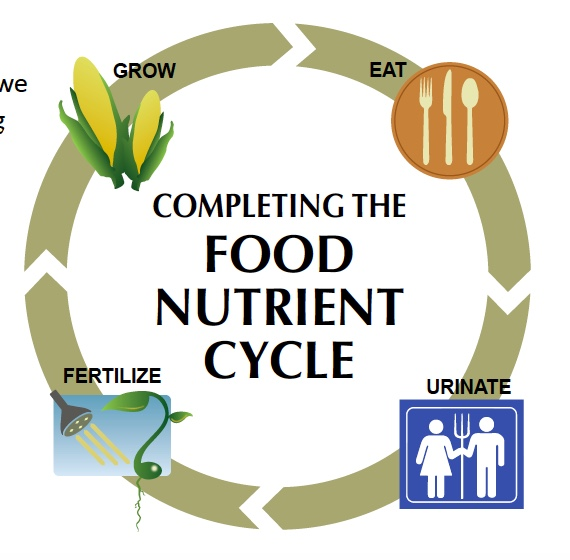 Urine Use as Fertilizer on the Home Scale