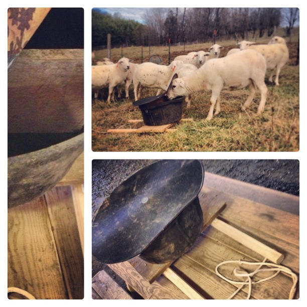 $10 DIY mineral feeder